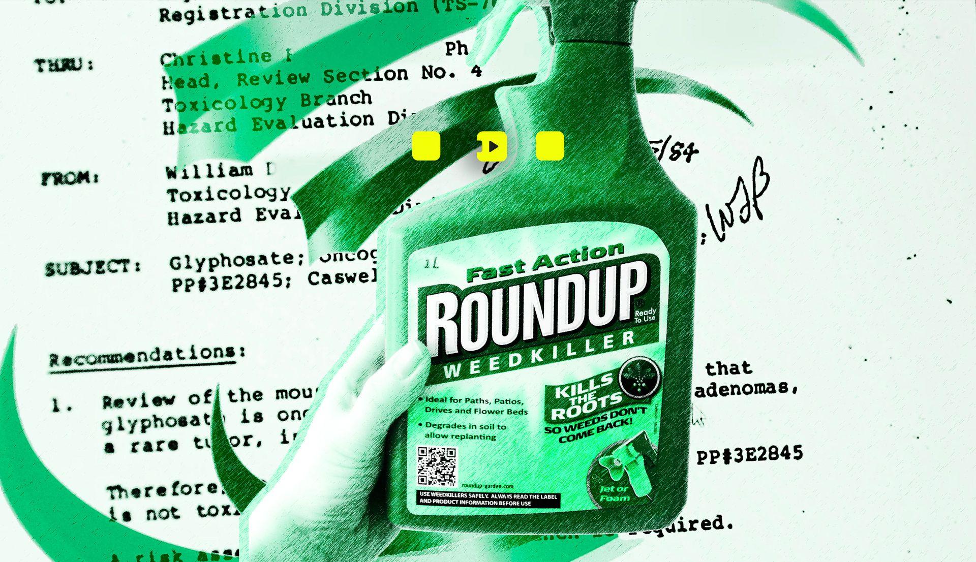 Afbeelding van Kijk terug: De macht van Monsanto