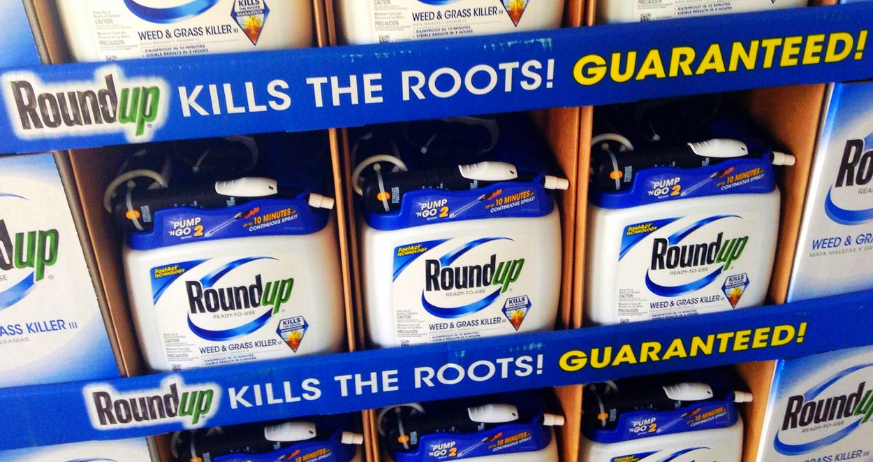 Roundup Flickr (Mike Mozart)