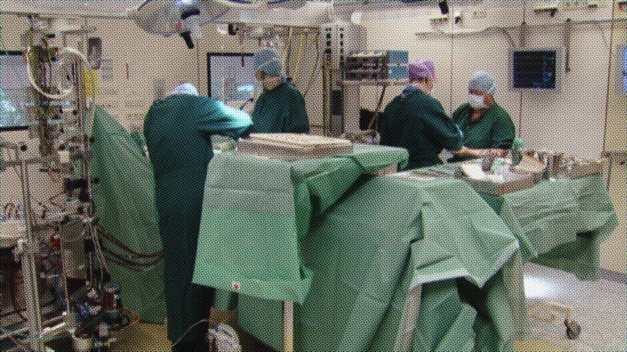 Ziekenhuiscalamiteiten deel 3