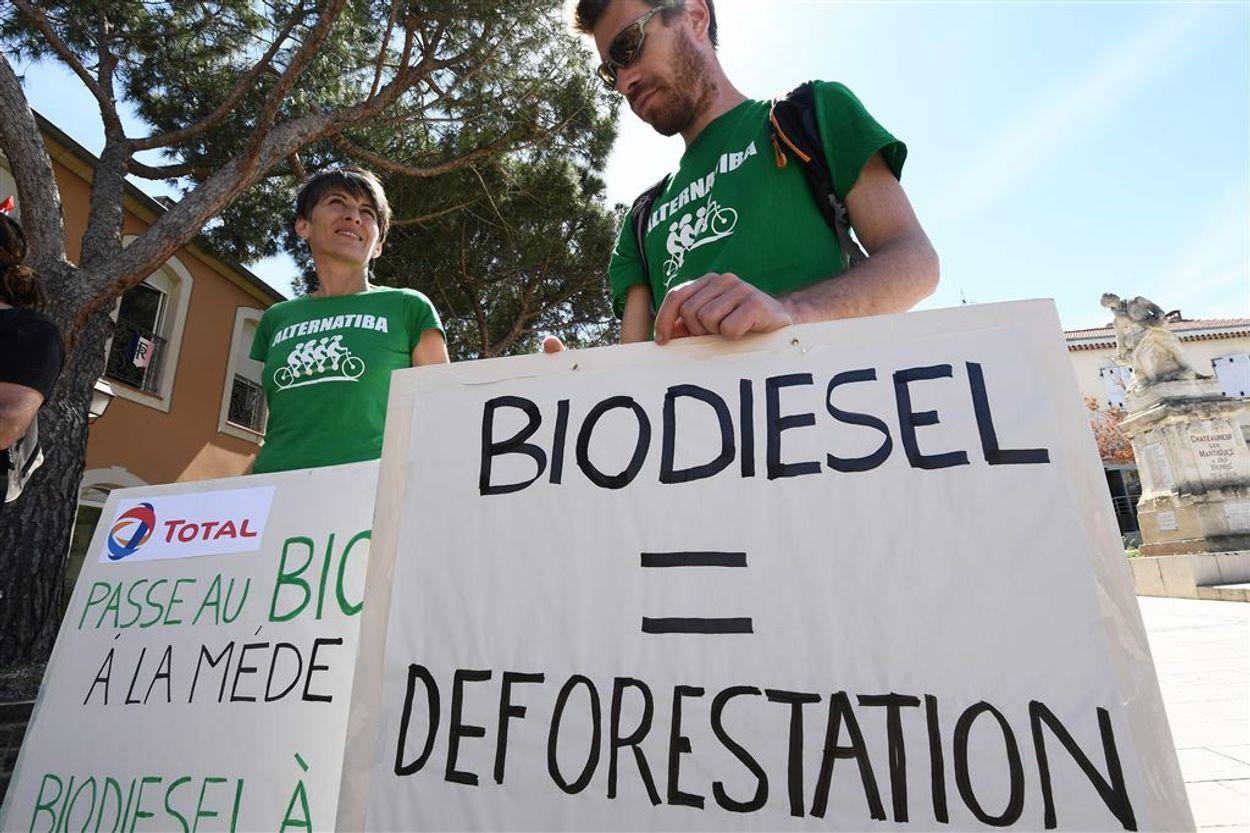 Afbeelding van Europese wetenschappers waarschuwen: miljardensubsidies biomassa weggegooid geld