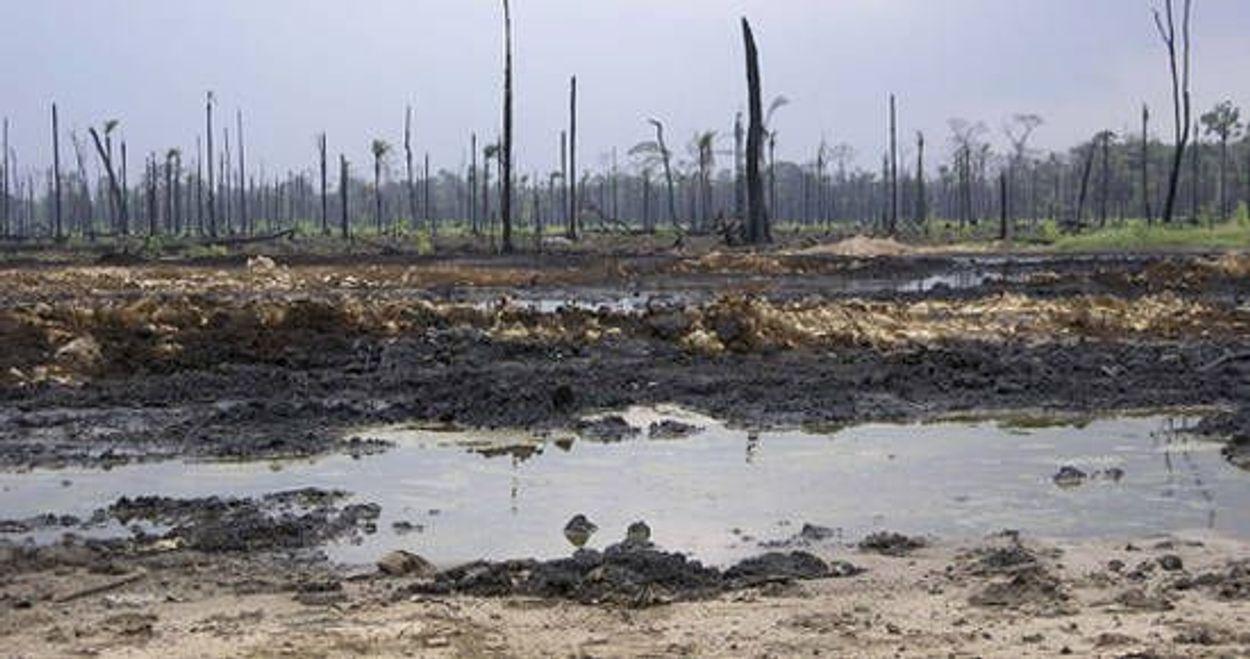 Afbeelding van Shell deels veroordeeld voor olieschade Nigeria