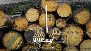 Afbeelding van Ondanks hevig protest toch vergunning voor biomassacentrale Diemen