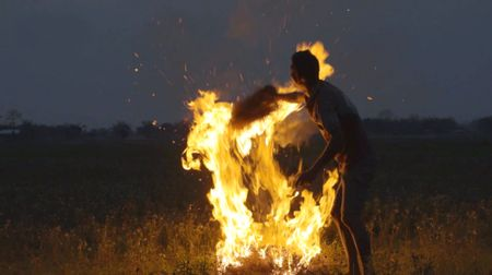 Afbeelding van Extra video bij uitzending over Wereld Natuur Fonds: wonen naast een wildpark