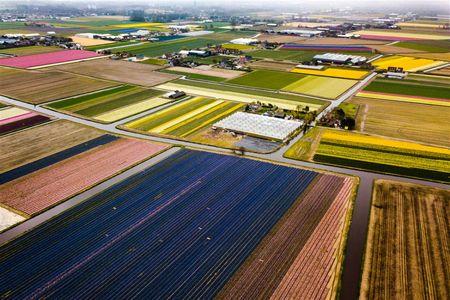 Afbeelding van Hoe veilig is het gebruik van landbouwgif?