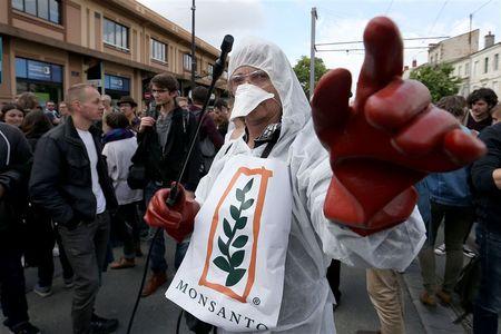 Afbeelding van Europees Parlement wil onkruidverdelger glyfosaat sneller verbieden