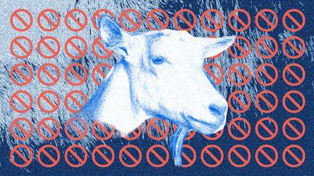 Afbeelding van Ziek van geiten