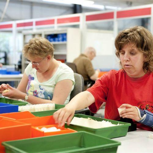 Afbeelding van SCP bevestigt: arbeidsgehandicapten dupe van Participatiewet