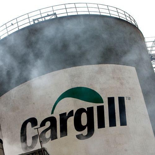 Afbeelding van Milieuactivisten: 'Ahold moet banden verbreken met destructieve voedingsreus Cargill'
