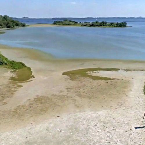 Afbeelding van Overheid wil natuurgebied Volkerak zout maken, ecologen vrezen het ergste