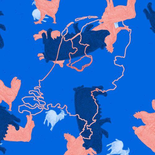 Afbeelding van Hoeveel veedieren zijn er in jouw provincie?