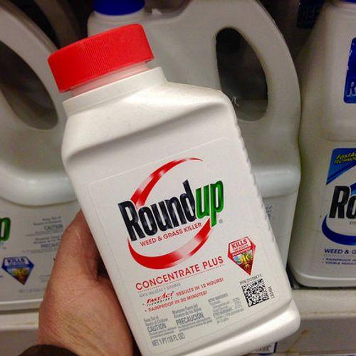 Afbeelding van Bayer wil 8 miljard schikken in Roundup-rechtszaken