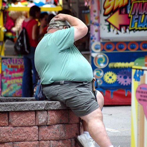 Afbeelding van 'Waarom zijn we nu veel dikker dan in 1976?'