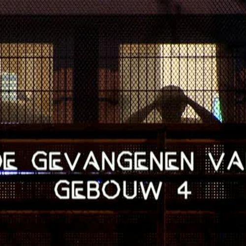 Afbeelding van De gevangenen van gebouw 4